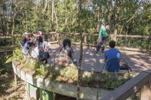parque ecológico imigrantes green business post 1