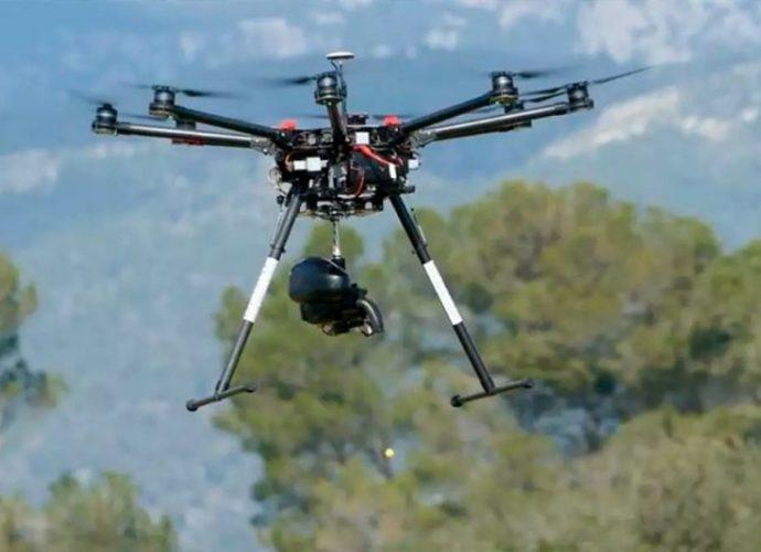 drone reflorestar