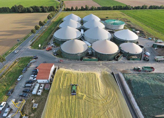 biodigestor energia paraná brasil