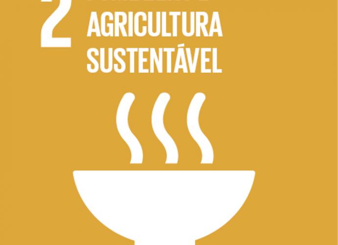ODS 2 ONU fome