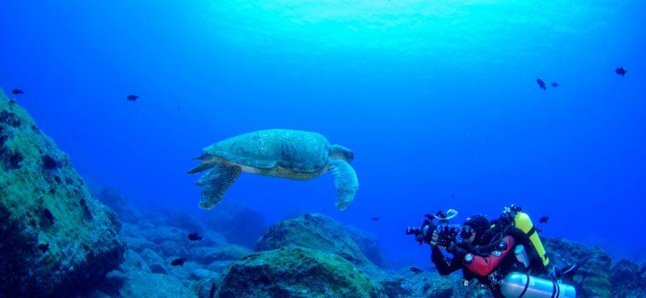 ambiente marinho