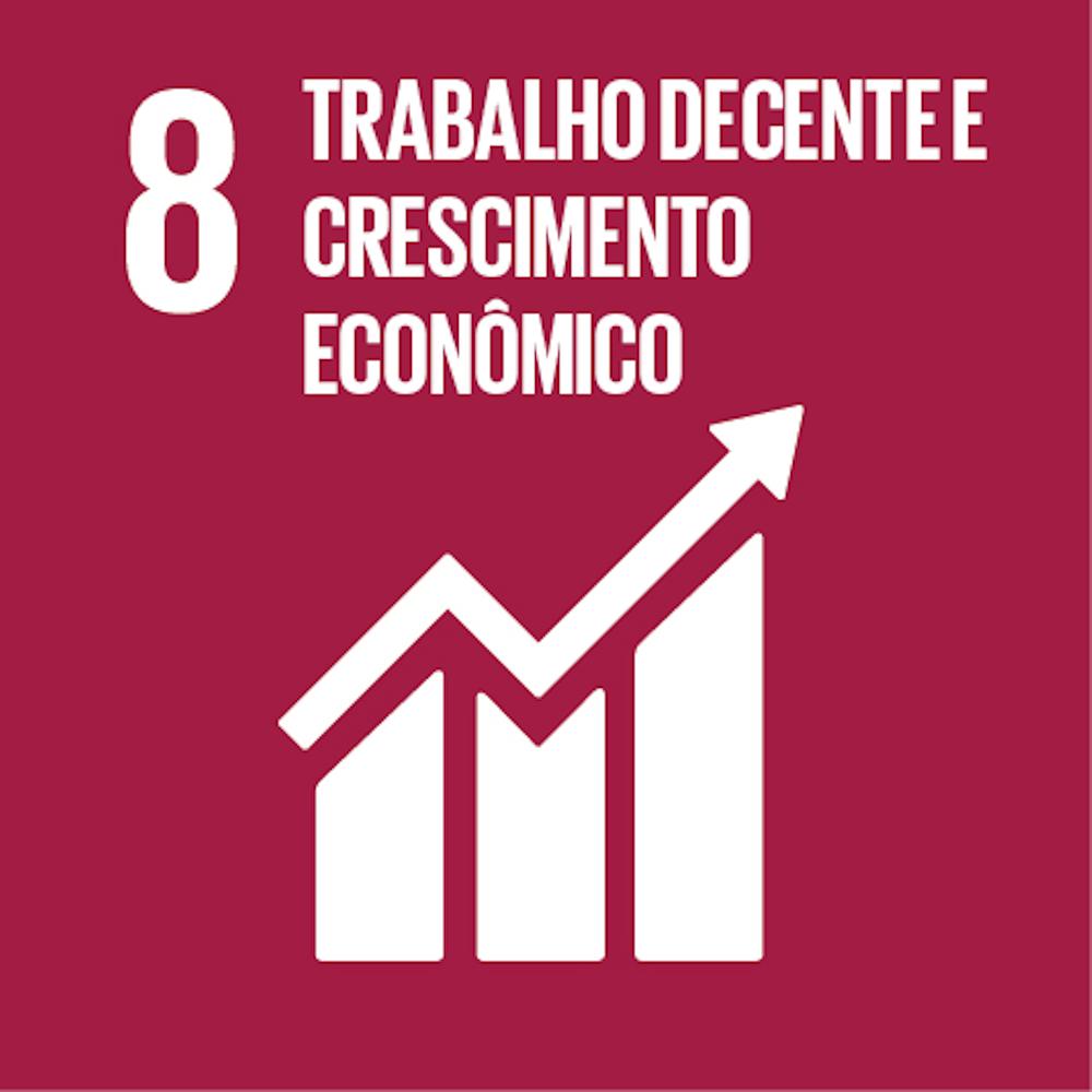 ODS 8 ONU